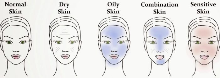 faces showing five different skin types: dry, oily, etc.